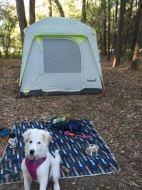 campinggirl