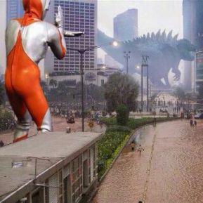 Godzilla in 2015 Flooding (Source: Social Media)
