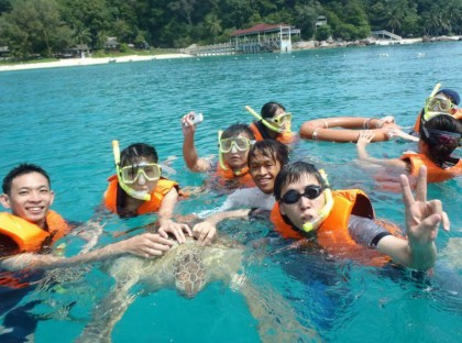 A turtle harassed by snorkelers in Malaysia