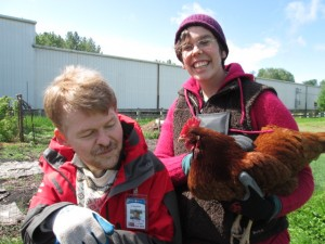 Paul helping with chicken chores at the Oregon Food Bank Learning Garden