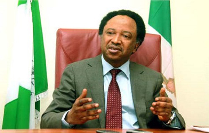 Image result for If Tinubu fails, there will be mass defection from APC - Shehu Sani