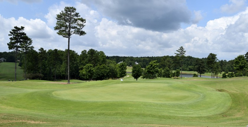 Golf course greens forest