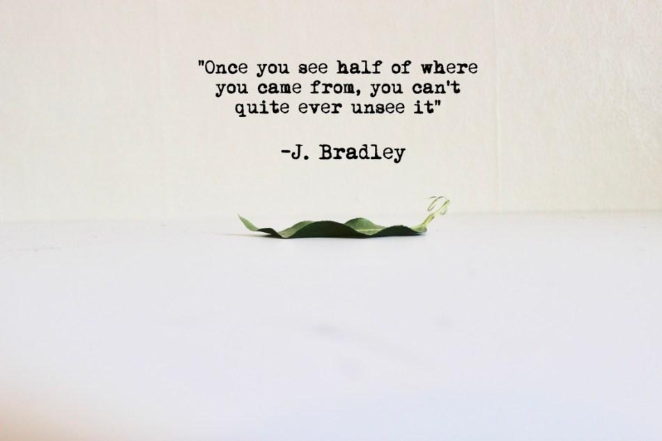 Bradley Quote