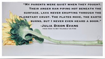 This is a quote from How to Set Yourself on Fire by Julia Dixon Evans. Reviewed by Independent Book Review