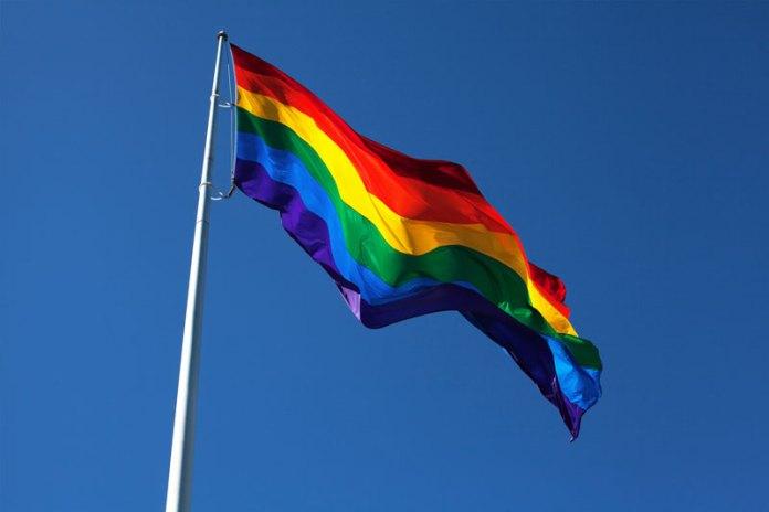 New School Flag
