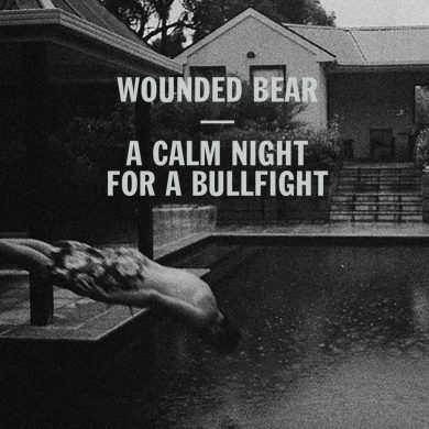 Wounded Bear