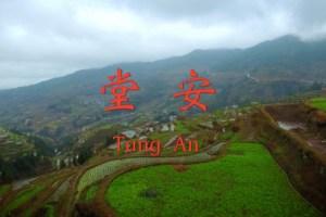 Tang An