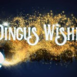Dingus Wishes