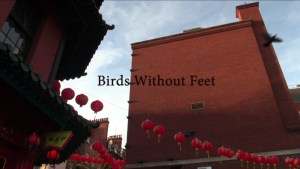 Birds Without Feet