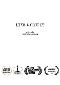 Like A Secret