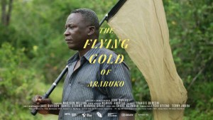 The Flying Gold of Arabuko