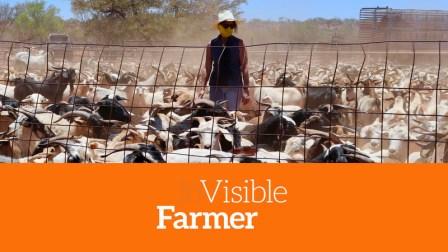 Visible Farmer