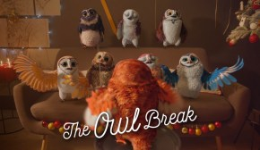 The Owl Break