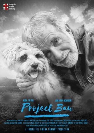 Project Bau