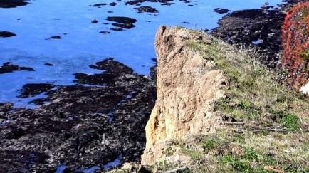 Cracks in the Coast