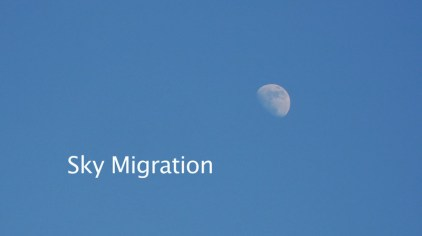 Sky Migration