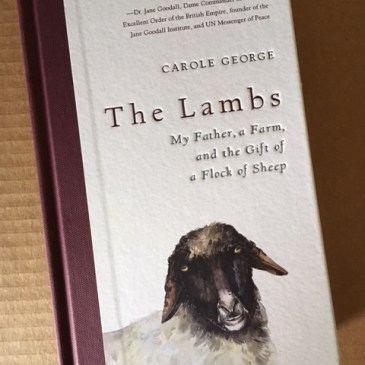 Reading list: The Lambs, by Carole George