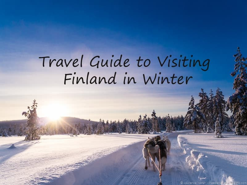 husky dog sledding in Finland during winter traveling