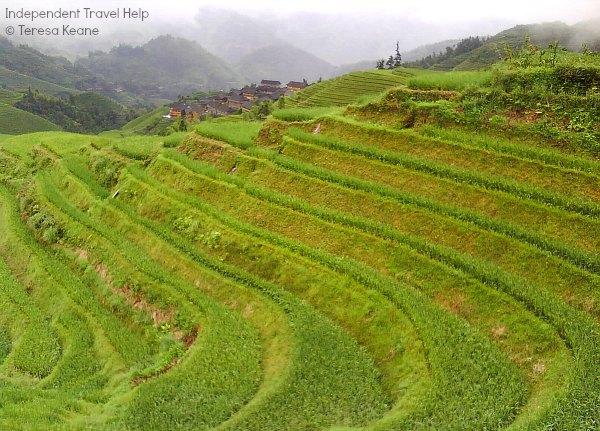 Longsheng Terrace Rice Fields