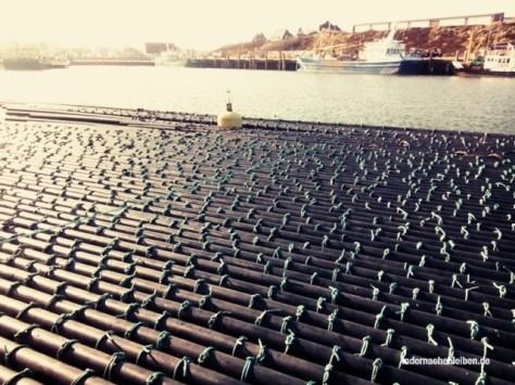 Hörnum Hafen