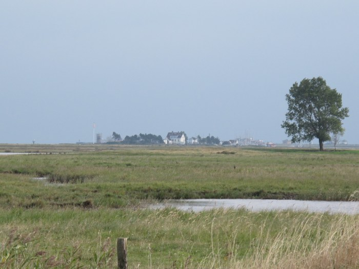 Lotseninsel von Maasholm gesehen