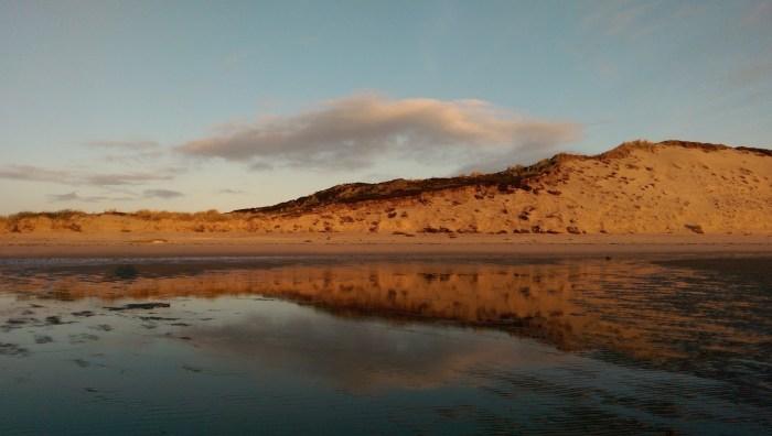 Morgenrot Süderheide