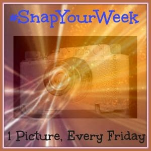 snap_your_week