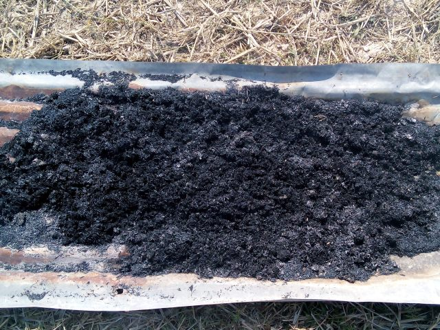 Samples of few of the first biochar produced.