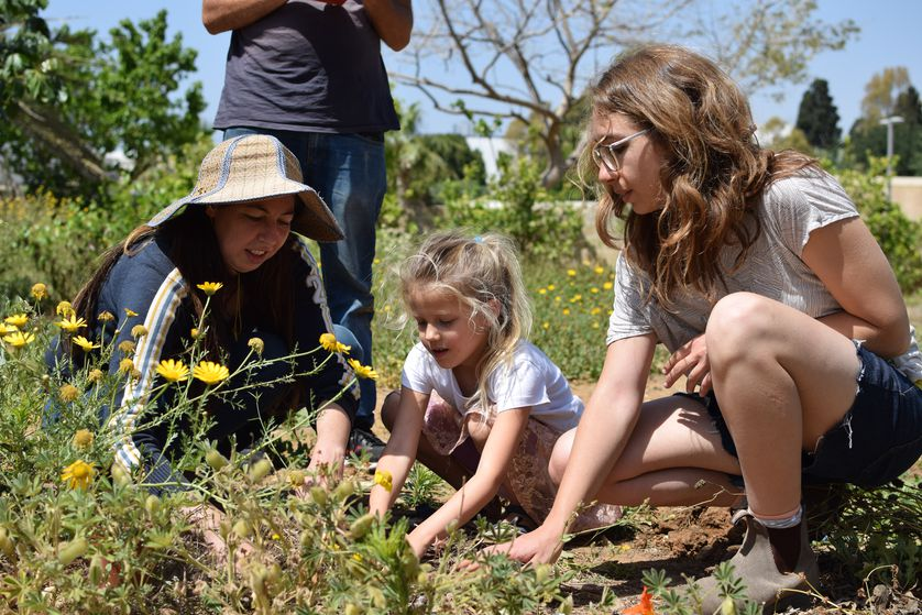 Why we should plant food forests instead of gardens