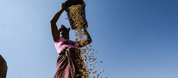 Using Big Data to Help Combat Malnutrition in Africa