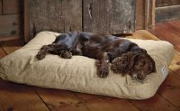 Indestructible Dog Beds - Top 5 Beds and Reviews