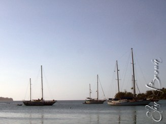 Boats in the harbor.