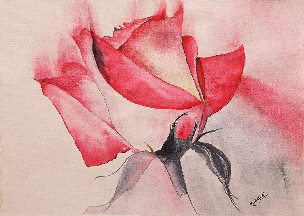Red Rose, painting by Ratnamala Indulkar, watercolour on paper, 10 x 14 inches