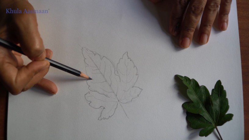 Pencil drawing demonstration-1 and drawing video of how to draw