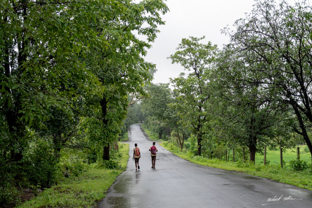 Children on way to school on a Saturday morning in rural Maharashtra, picture by Milind Vishwas Sathe