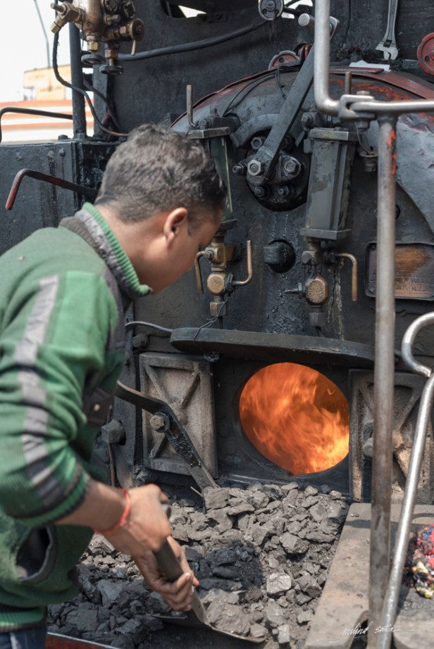 Shoving coal into the boiler of the steam loco (2017)