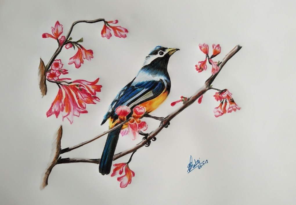 Bird painting by Bhakti Nawale - art in the time of lockdown to fight covid pandemic