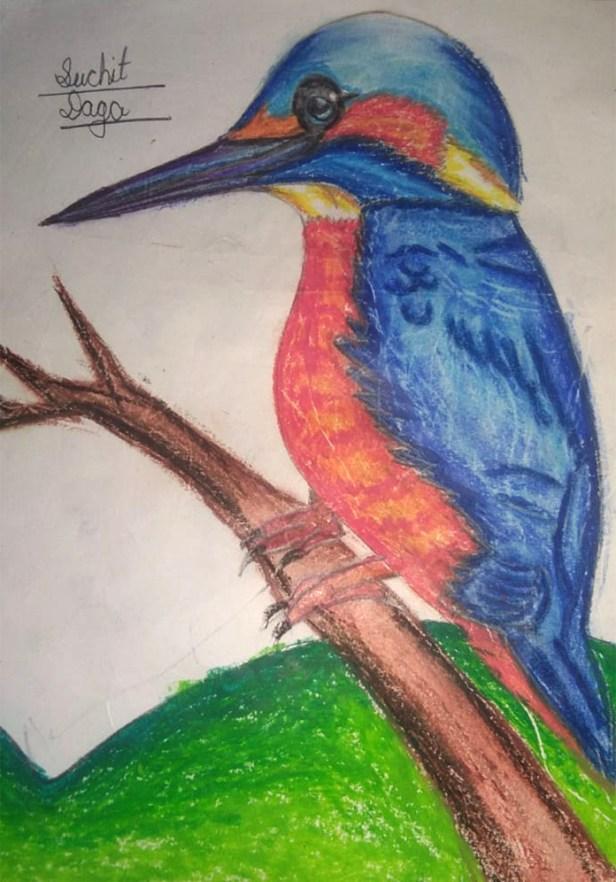 Artwork by Suchit Daga (class 6), Guwahati,Assam