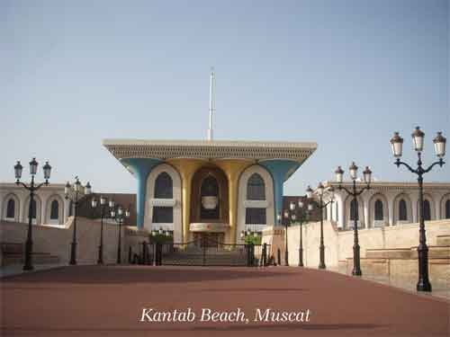 Mesmerizing Muscat
