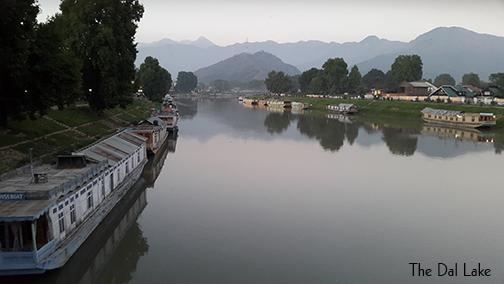 The Dal lake in Kashmir