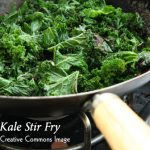 Go Kale Green For Summer