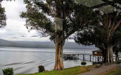 New Zealand Beckons: Milford Sound