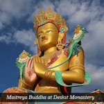 Summer Meditations on Delusion