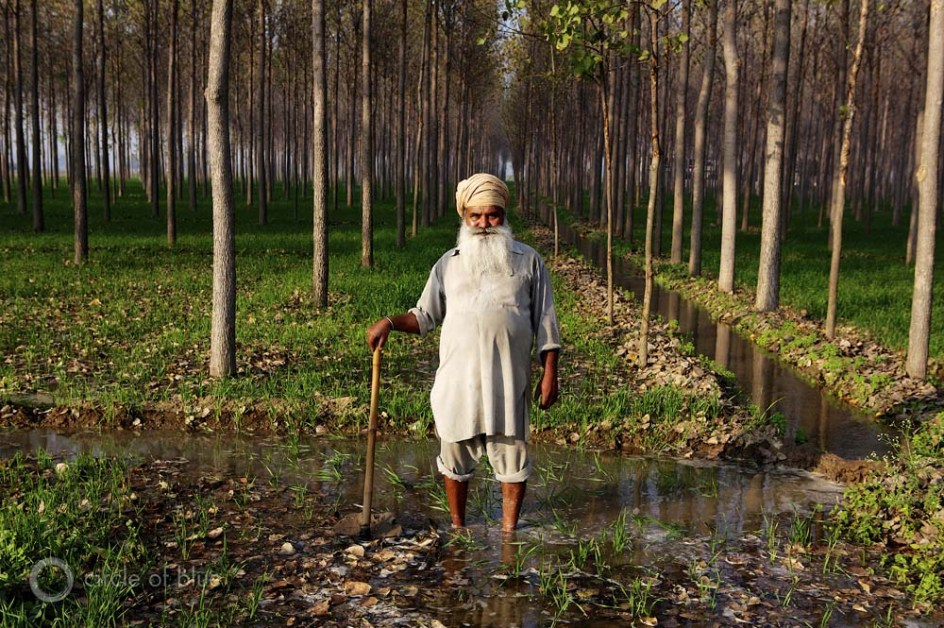 Harvesting Rain: Indian Americans Prepare for Drought