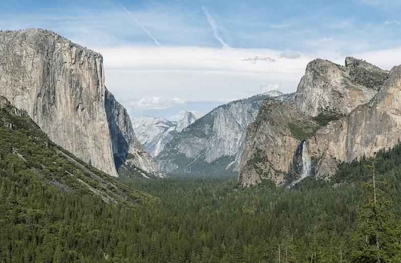 How to Dodge a Bear at Yosemite