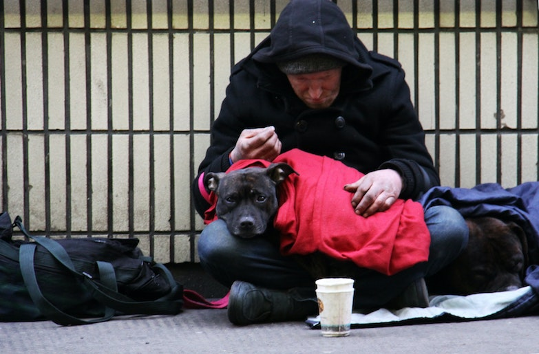 The Homeless Count In The Census