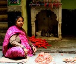 Culinary tour Jaipur