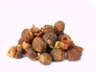 soapnuts