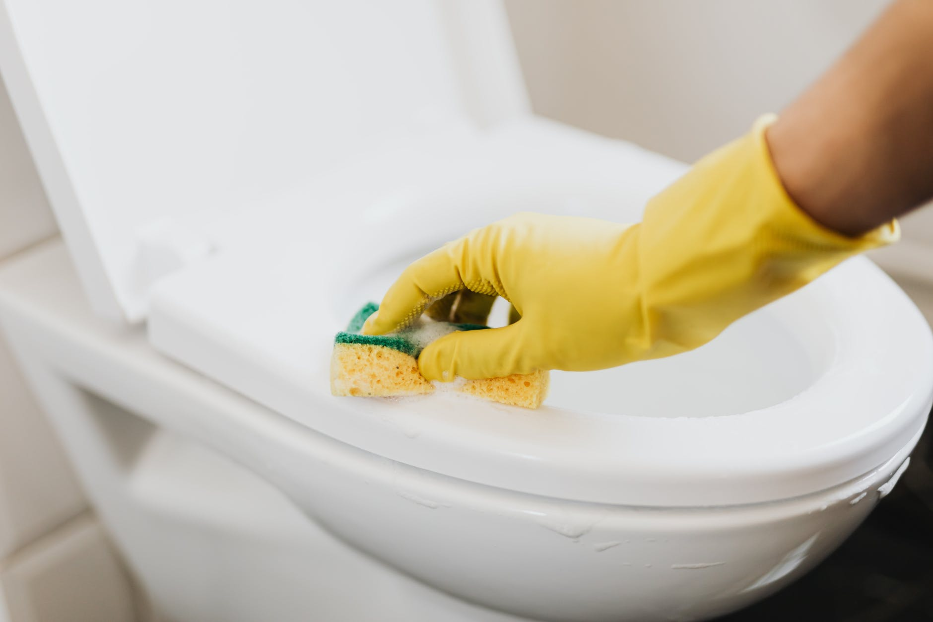 crop faceless housekeeper cleaning toilet bowl
