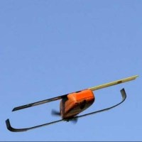 Pentagon Tests Micro-Drone Swarm Technology